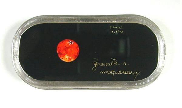 Groseille à maquereau, 2002