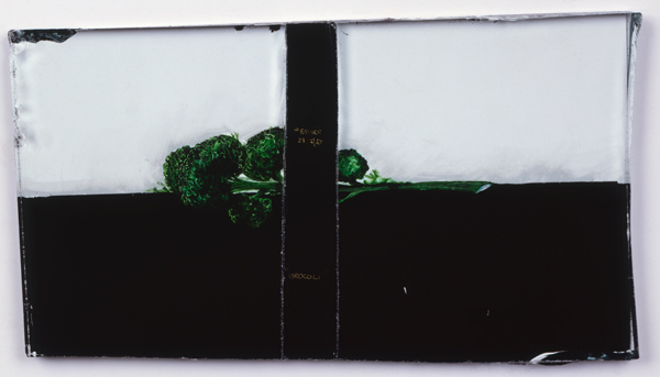 Émail à froid sur verre dans boite de conserve