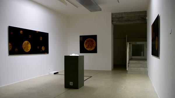 Casei, vue d'exposition Fondation Salomon, 2010
