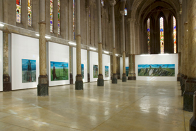 Marc Desgrandchamps : expositions