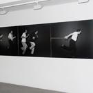 Jean-Claude Guillaumon : Vues de l'exposition CAP Saint-Fons