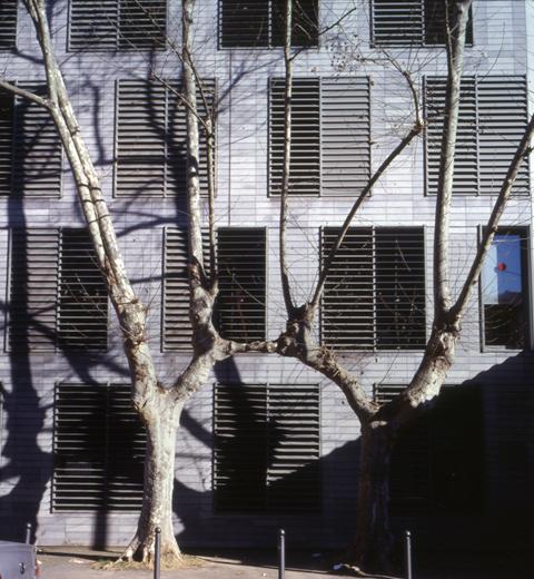 L'arbre, 2008