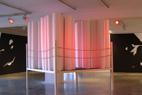 Olivier Nottellet, Centre d'arts plastiques de Saint-Fons, 2006