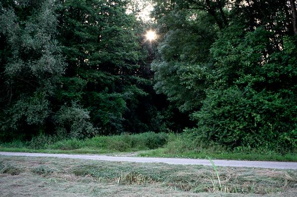 Ouvert, un chemin du visible, 2010
