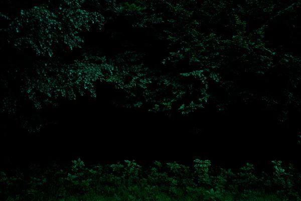 Eric Hurtado, La ronde de nuit, 2007