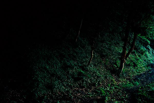 La ronde de nuit, 2007