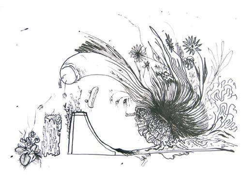 Escargot skate, 2009