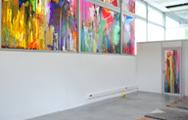 Vues d'exposition, Véranda, Grenoble, 2010