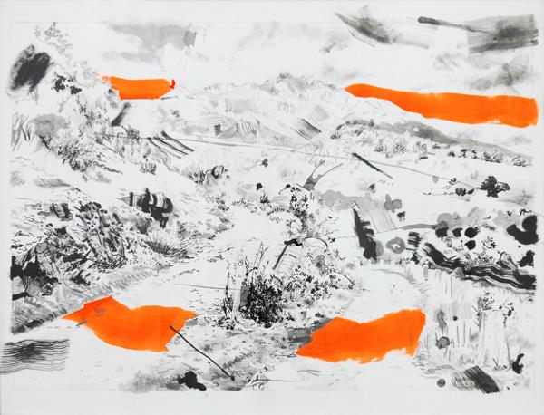 Documents d'artistes Auvergne - Rhône-Alpes - Ludovic Paquelier