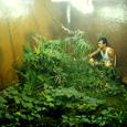Documentation en art contemporain - Emmanuel Louisgrand