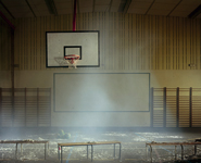 Delphine Balley - Photographie