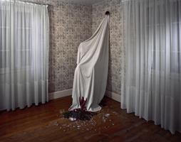 Delphine Balley - L'Album de famille