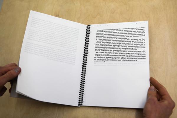 Documents d'artistes Auvergne - Rhône-Alpes - Simon Feydieu