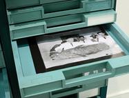 Documentation en art contemporain - Laurence Cathala