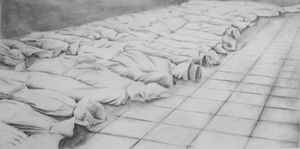 Documents d'artistes Auvergne - Rhône-Alpes - Fabienne Ballandras