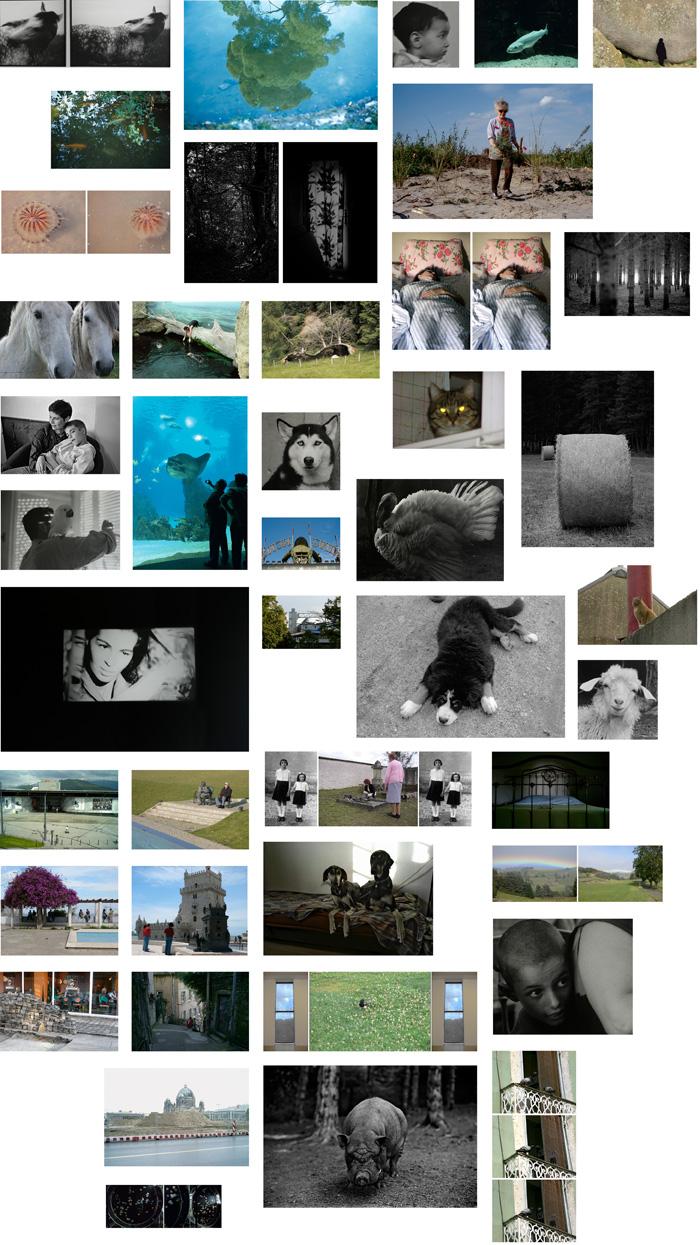 Documents d'artistes Auvergne - Rhône-Alpes - Arièle Bonzon