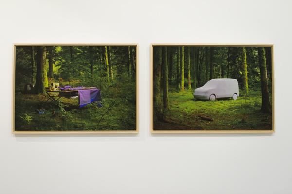 Vue de l'exposition <i>Vérifier l'Arcadie</i>, Galerie Françoise Besson, Lyon, 2015