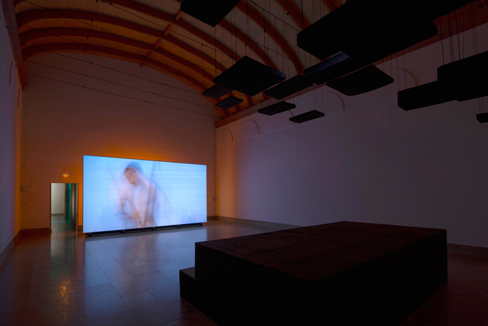 Vue de l'exposition <i>Nos yeux vivants</i>, Centre International d'Art et du Paysage de l'île de Vassivière, 2019